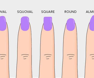 nails, round, and shape image
