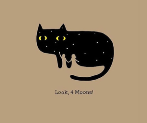 cat, moon, and wallpaper image
