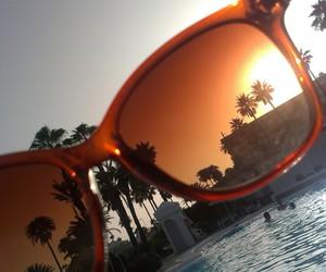holiday, palm, and pool image