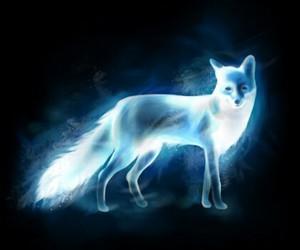 fox, harry potter, and patronus image