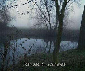 eyes, grunge, and sad image