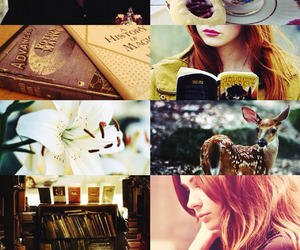 lily evans and harry potter image