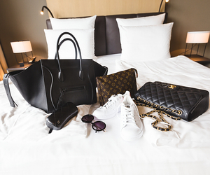 celine, bag, and Louis Vuitton image