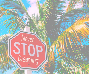 summer, Dream, and palm trees image