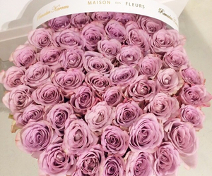 roses, bouquet, and luxury image