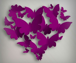 butterflies, cute, and heart image