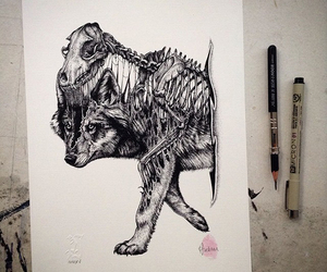 drawing, wolf, and animal image