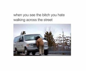 bitch, funny pics, and funny image