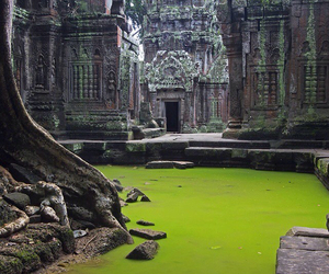 Cambodia, Temple, and ta prohm image