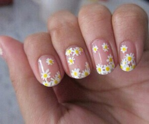 flowers, trasparent, and nails image