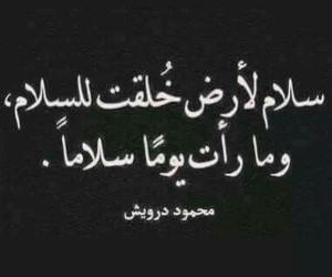 arabic, محمود درويش, and عربي image