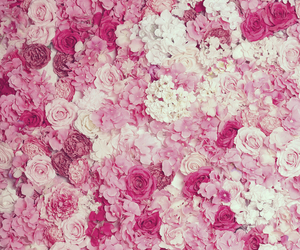 floral, pink, and flowers image