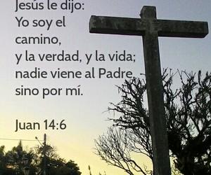 camino, cruz, and life image