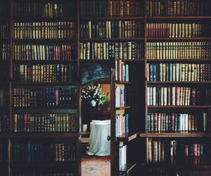 beautiful, home, and library image