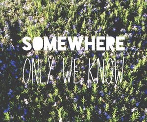 somewhere, quote, and flowers image