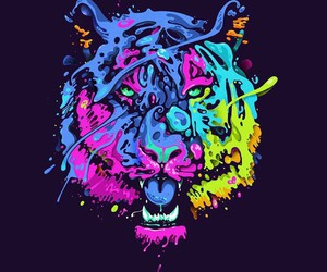 tiger, animal, and colorful image