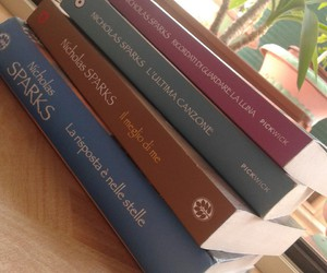 nicolas sparks and book books image