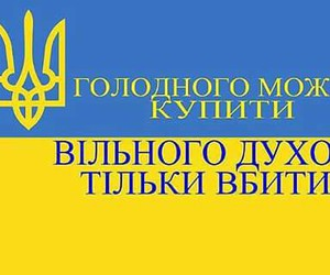 heart, ukraine, and proud image