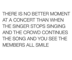 all time low, concert, and crowd image