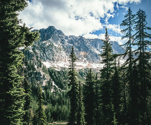 cloud, forest, and mountain image