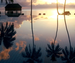 nature, sunset, and beach image