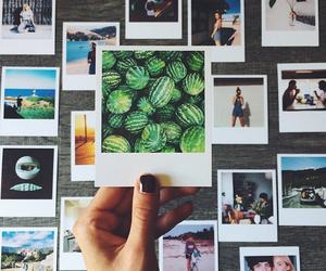 photo, polaroid, and watermelon image