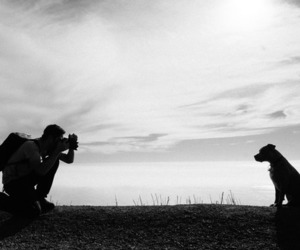 camera and dog image