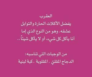 arab, arbic, and طعام image