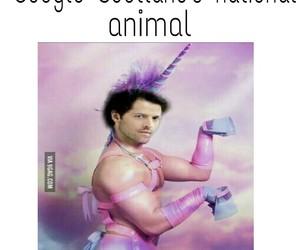 fandom, funny, and supernatural image