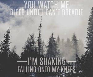 stitches, Lyrics, and shawn mendes image