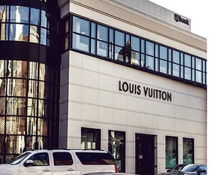 Louis Vuitton, car, and luxury image