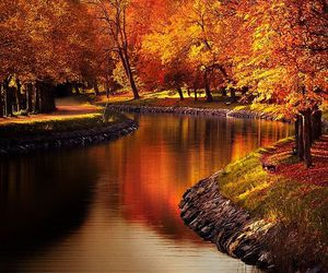 autumn, nature, and river image