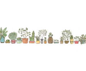 plants, drawing, and art image