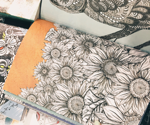 draw, flowers, and painting image