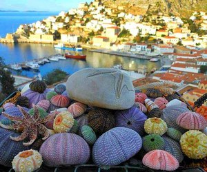 colors, Greece, and Island image