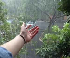 rain, grunge, and green image