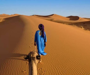 desert and Sahara image