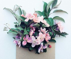 flowers, envelope, and pink image
