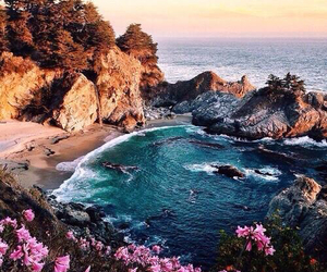 beach, summer, and flowers image
