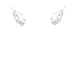 header, angel, and wings image