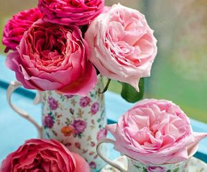 flowers, roses, and simply beautiful image