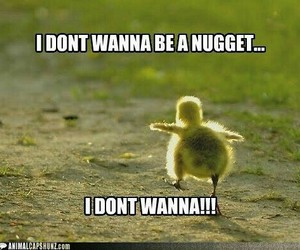 funny, nuggets, and Chicken image