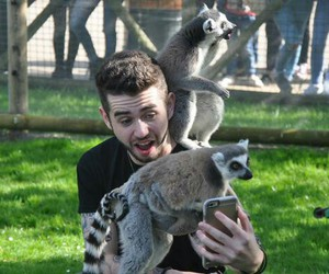 lemurs, chris leonard, and stereo kicks image
