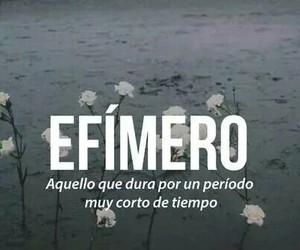 words, efimero, and efímero image