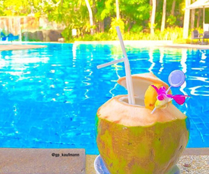 coconut, exotic, and pool image