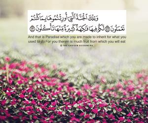 FRUiTS, paradise, and quran image