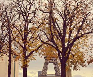 2012, autum, and autumn image