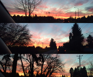 colorful, nature, and pdx image