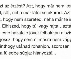 hungarian, magyar, and idezet image