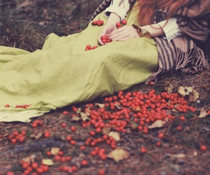 autumn, ground, and berries image